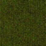Cord Khaki Green