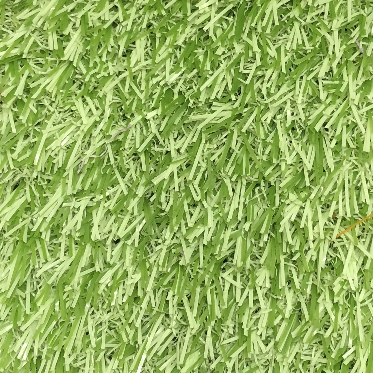 Funky Grass Lime